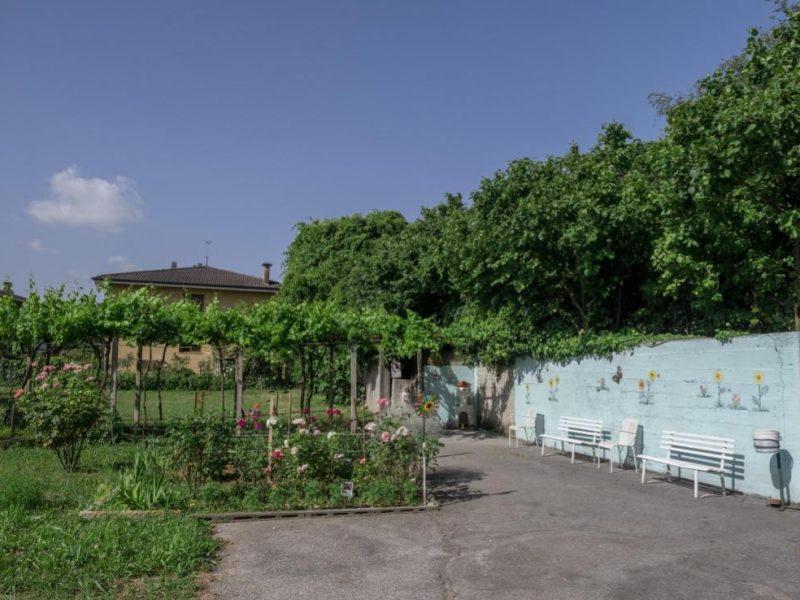 il giardino - particolare
